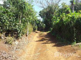 N/A Terrain a vendre à , Alajuela Concepción, San Ramon, Alajuela