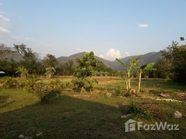 N/A Land for sale in Thung Chang, Nan 11 Rai Land With A House & 7 Bungalows
