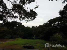 Alajuela Se vende hermosa Quinta, calle Rosales en Grecia: Countryside Agricultural Land For Sale in Puente d, Puente de Piedra, Alajuela N/A 土地 售