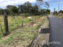 Limon Development Parcel For Sale in Siquirres, Siquirres, Limón N/A 土地 售