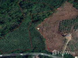 N/A Land for sale in Rawai, Phuket Seaview Land 5 Rai For Sale In Rawai