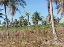 N/A Property for sale in Khao Mai Kaeo, Pattaya 15 Rai Land in Khao Mai Kaeo