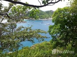 N/A Land for sale in Ko Tao, Koh Samui Nice Sea View Plot for sale in Ko Tao