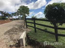 N/A Land for sale in , Guanacaste Cuesta Grande, Guanacaste, Address available on request
