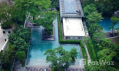 Photos 1 of the Communal Pool at Zire Wongamat