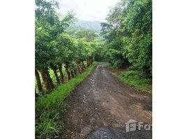 Guanacaste RIO CAÑAS : Riverside property - REDUCED PRICE !, Libano, Guanacaste N/A 土地 售