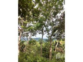 N/A Land for sale in , Guanacaste 5000 - Oversized, ocean view lot: Great lot, great view, great value!, Sámara, Guanacaste