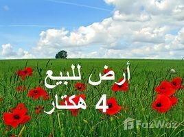 N/A Land for sale in Azemmour, Doukkala Abda أراضي محفظة مجهزة للفلاحة نواحي إثنين هشتوكة