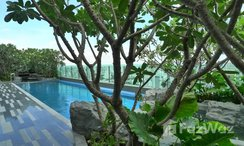 Photos 3 of the Communal Pool at The Address Asoke