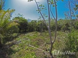 N/A Immobilier a vendre à , Bay Islands Minutes, but worlds away, Utila, Islas de la Bahia