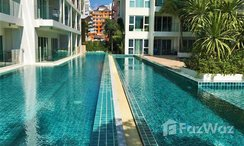 Photos 3 of the Communal Pool at Sunset Boulevard 1