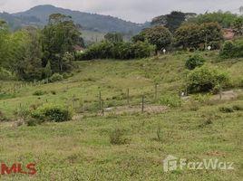 N/A Terreno (Parcela) en venta en , Antioquia A 2.4 KM DEL CRUCE EN LA VIA QUE VA AL AEROPUERTO, LLANOGRANDE Y EL TABLAZO, Rionegro, Antioqu�a