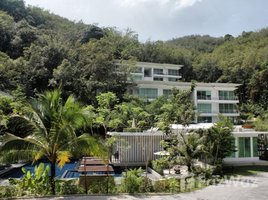 2 Bedrooms Apartment for sale in Kamala, Phuket The Trees Residence