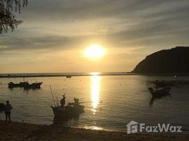 苏梅岛 Ko Pha-Ngan More Than 13 Rai, Beachfront Land at Mae Haad Beach, Phangan N/A 土地 售