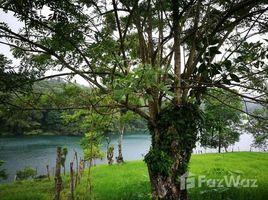 N/A Terreno (Parcela) en venta en , Guanacaste DUVAR: Mountain Home Construction Site For Sale in Tronadora, Tronadora, Guanacaste