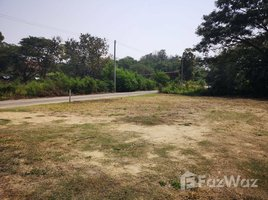 N/A Property for sale in Tha Wang Tan, Chiang Mai 800 SQM Land for Sale in Saraphi, Chiang Mai