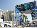 2 Bedrooms Apartment for sale at in Shoreline Apartments, Dubai - U786740