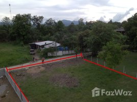 N/A Property for sale in San Pong, Chiang Mai Land 100 Sqw Natural View in Mae Rim