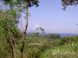 N/A Property for sale in Sakhu, Phuket Naithon Hill Land For Sale