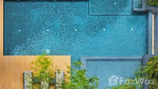 Photos 1 of the Communal Pool at Serio Sukhumvit 50