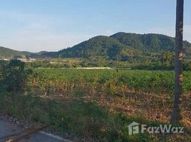 N/A Land for sale in Bang Sare, Pattaya Land For Sale In Bangsarey