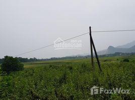 N/A Đất bán ở Cư Yên, Hòa Bình Bán gấp lô đất thổ cư 6800m2, giá thanh lý 1.5 tỷ tại xã Cư Yên, Lương Sơn, Hòa Bình