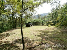 San Jose 11,460 SQM Land for Sale in Mora N/A 土地 售