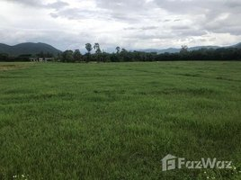N/A Land for sale in On Tai, Chiang Mai Land in Tambom On Tai