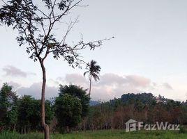 N/A Land for sale in Taling Ngam, Koh Samui Land Taling Ngam