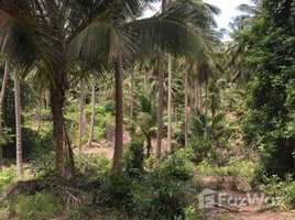 N/A Property for sale in Maenam, Surat Thani Land For Sale Closed To Santiburi Country Club