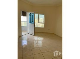 1 Bedroom Apartment for rent in Orient Towers, Ajman Orient Tower 2
