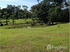 N/A Grundstück zu verkaufen in , Limon Lote de oportunidad con lago!!!: Mountain Home Construction Site For Sale in San Isidro, San Isidro, Limón