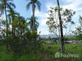 N/A Terreno à venda em Nova Hartz, Rio Grande do Sul Dois de Janeiro, Nova Hartz, Rio Grande do Sul
