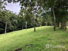 N/A Terreno (Parcela) en venta en , Guanacaste Tejona, Guanacaste, Address available on request