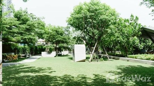 Photos 1 of the Communal Garden Area at The Tree Interchange