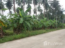 N/A Land for sale in Bo Phut, Koh Samui Land For Sale At Mae Nam Soi 1