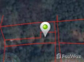 N/A Land for sale in Pa Daet, Chiang Mai 2 Rai 2 Ngan Riverside Land for Sale in Saraphi