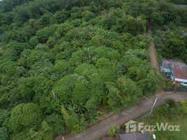 N/A Land for sale in Ko Kaeo, Phuket 6.5 Rai Seaview Land Investment on Coconut Island