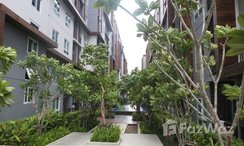 Photos 3 of the Jardin commun at The Trust Central Pattaya