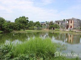 N/A Land for sale in Ninh Xa, Bac Ninh Bán 800m2 đất Ninh Xá, Thuận Thành, Bắc Ninh, phù hợp KD nhà nghỉ sinh thái