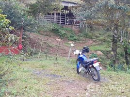 Cartago 5 Hectares Land on the Main Road for Sale in Turrialba N/A 土地 售