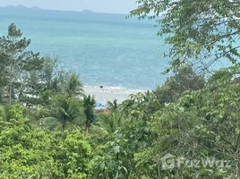 苏梅岛 Ko Pha-Ngan 1 Rai Seaview Land near Haad Yao Beach, Koh Phangan N/A 土地 售