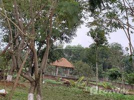 河內市 Hoa Thach Bán đất xã Hòa Thạch, Quốc Oai, Hà Nội diện tích rộng 4000m2 N/A 土地 售