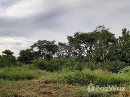 N/A Land for sale in Cabuya, Herrera CABUYA , PARITA VÍA PRINCIPAL A LOS HIGOS, Parita, Herrera