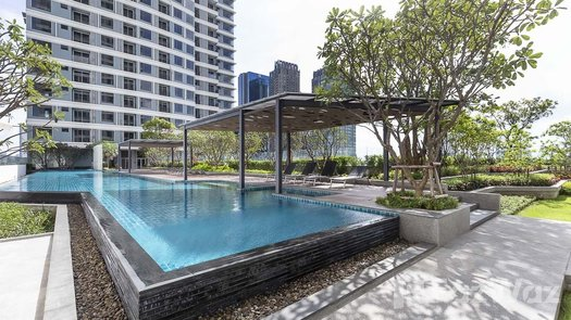 Photos 1 of the Communal Pool at The Saint Residences