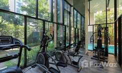 Photos 2 of the Communal Gym at Palm Springs Nimman Fountain