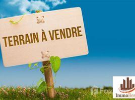 Grand Casablanca Bouskoura Terrain 1000 m² en vente à Dar Bouazza à quelques minutes de l'école Belge au quartier Nawrass N/A 土地 售