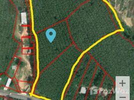 普吉 帕洛 35 Rai Land in Thalang, Phuket N/A 土地 售
