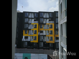1 Bedroom Property for sale in Wichit, Phuket THE BASE Central Phuket