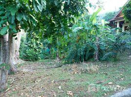 N/A Land for sale in Ko Tao, Koh Samui 2 Rai Seaview Land With Buildings at Sairee Koh Tao